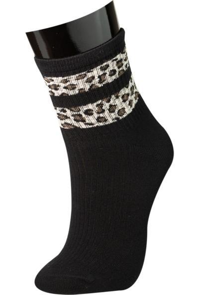 Roff Bamboo Kadın Soket Çorabı 6'lı Çok Renkli 36 - 40