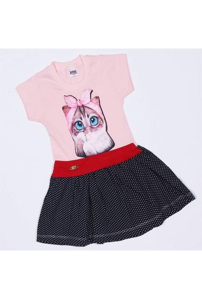 Pipo Baby Puanlı Kedi Baskılı Penye Kız Bebek Elbise