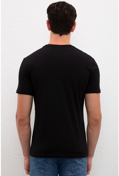 U.S. Polo Assn. Erkek T-Shirt 50217813-VR046