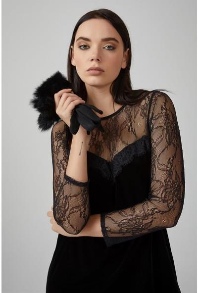 Gusto Robası Ve Kolları Dantel Kadife Elbise - Siyah