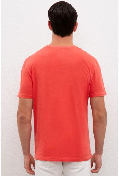 U.S. Polo Assn. Erkek T-Shirt Basic 50220102-VR039