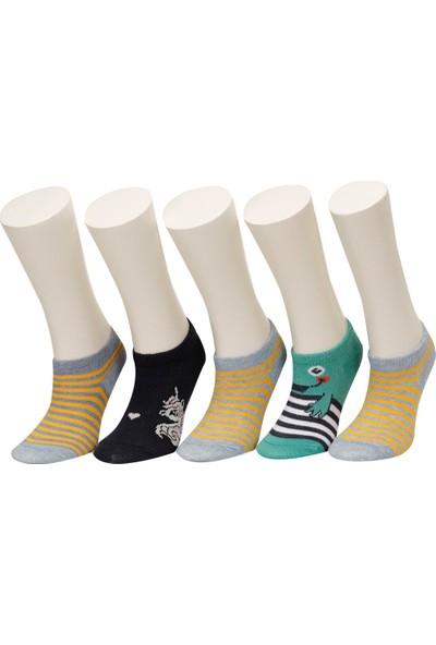 Cute 5 Lı Ptk-B Mavı Multı Erkek Çocuk 5'li Patik Çorap