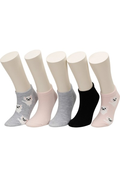 Cute Dog 5 Lı Ptk-G Pembe Multı Kız Çocuk 5'li Patik Çorap