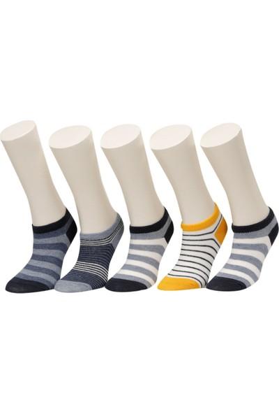 Strıpes 5 Lı Ptk-B Sarı Multı Erkek Çocuk 5'li Patik Çorap