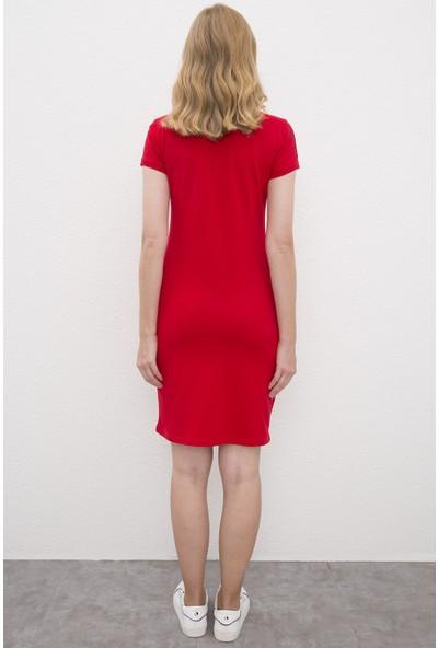 U.S. Polo Assn. Kadın Elbise 50221981-Vr030