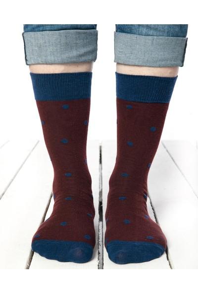 Socks Concept Lacivert Puantiye Desenli Erkek Soket Çorap