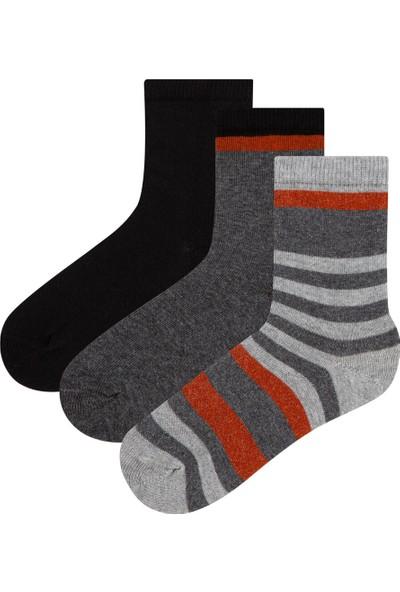 Penti Renkli Erkek Çocuk Dadson 3'lü Soket Çorap