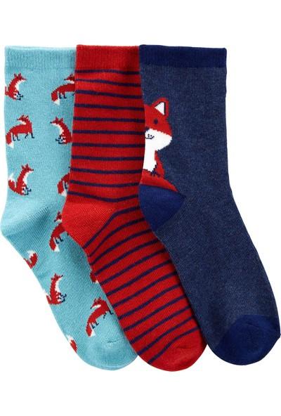 Carter's 3'lü Çocuk Çorabı 3I985510