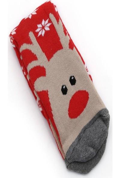 Ciorap 2'li Kız Çocuk Geyik Desenli Havlu Çorap 11639-B2