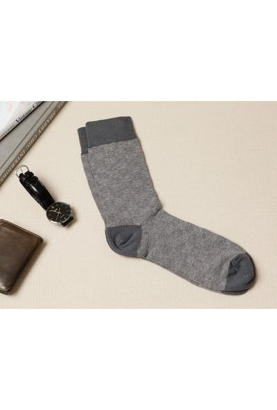 English Home Square Pamuk Erkek Çorap Standart Antrasit