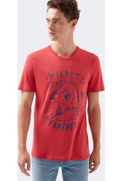Mavi Wildest Baskılı Kırmızı Tişört 8806083-30704