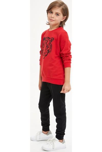 DeFacto Erkek Çocuk Kaplan Baskılı Sweatshirt ve Eşofman Altı Takım S0419A620AU