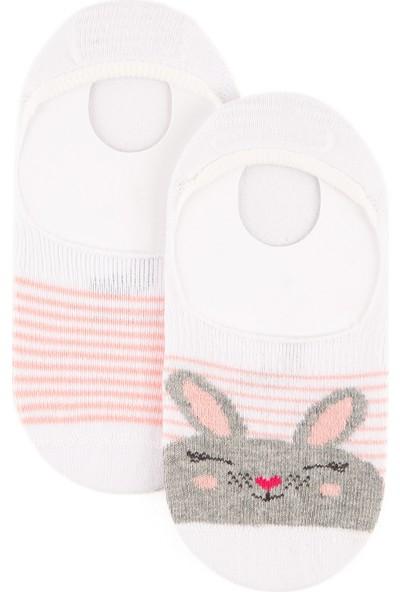 U.S. Polo Assn. Kız Çocuk Pembe Çorap 50222163-VR041
