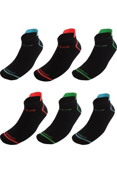 Pictor Gift Wangari Siyah 6 Çift Recyled Spor Koşu Çorabı