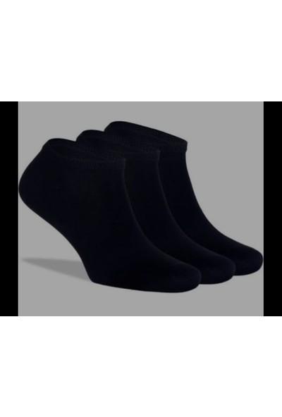 SRC 12'li Erkek Sneakers Kısa Çorap