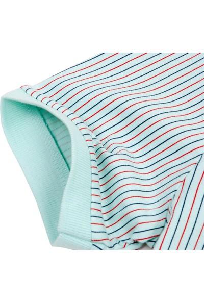 Blue Sail Yeşil Renk Çizgili Polo Erkek Tişört