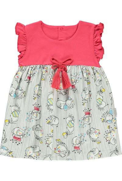Kujju Kız Bebek Elbise 6-18 Ay Narçiçeği