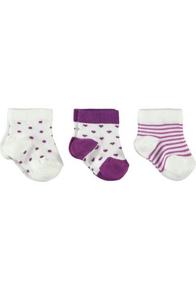 Civil Baby Kız Bebek 3'lü Çorap Set 0-18 Ay Mürdüm