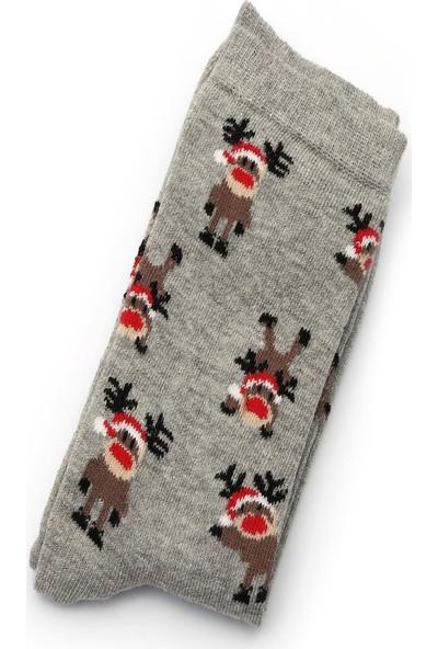 Ciorap 5'li Kadın Yılbaşı Temalı Asortili Çorap 3470C-B5