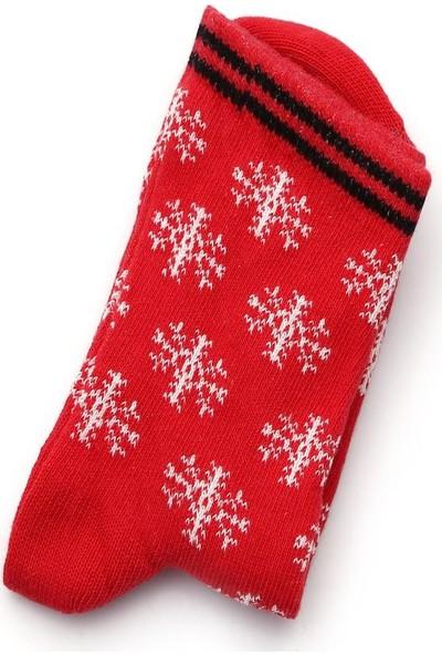 Ciorap 5'li Erkek Çocuk Yılbaşı Temalı Asortili Çorap 2470A-B5