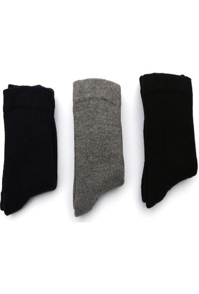 Ciorap 3'lü Erkek Çocuk Düz Kalın Renk Asortili Çorap 2447-B3