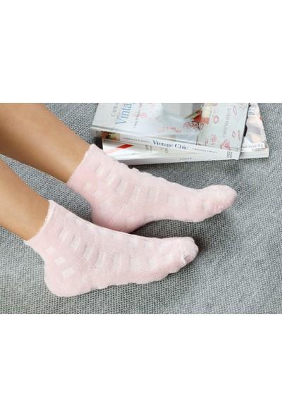 English Home Towel Pamuk Polyester Çorap Standart Pembe