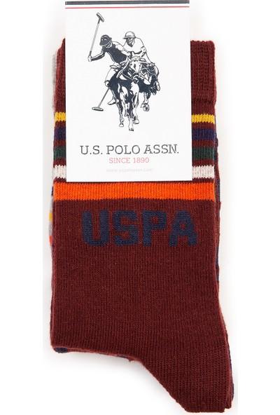 U.S. Polo Assn. Erkek Çocuk Kırmızı Çorap 50228619-VR014