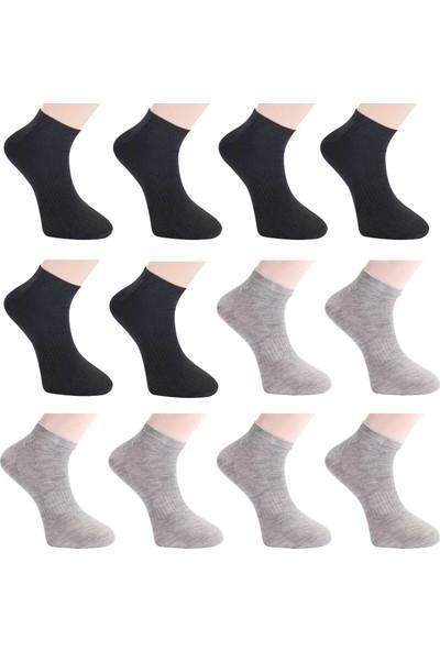 Viridi Vanda Erkek 12'li Patik Çorap