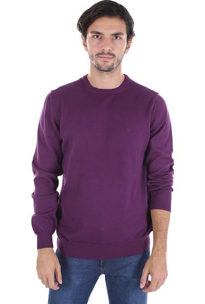 Diandor Sıfır Yaka Erkek Triko A.mor/l.purple 2025200
