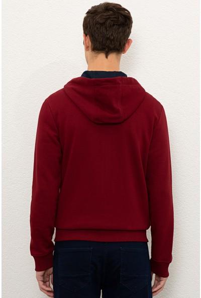 U.S. Polo Assn. Erkek Kırmızı Sweatshirt 50225494-VR014