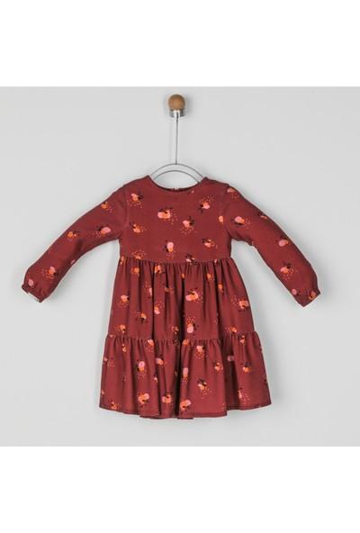 Panço Elbise Uzun Kollu Kız Bebek Vişne