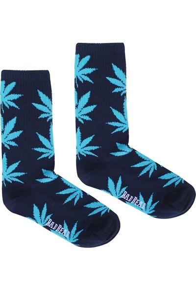Bad Bear Cannabis Turkuaz Uzun Çorap