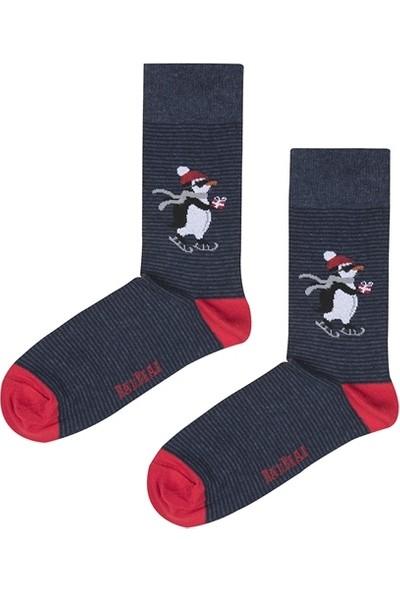 Bad Bear Pengu Çivit Mavi Uzun Çorap