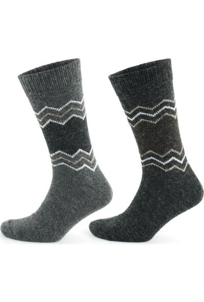 Go With Alaska Doğal Alpaka Yünü Gri Antrasit Soft Yün Kışlık Çorap 2 Çift