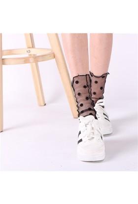 Hane14 Leg Avenue Puantiyeli Kristal Tül Kısa Çorap Siyah