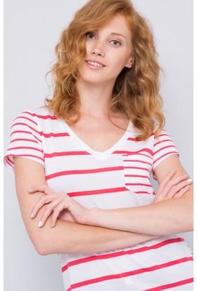 U.S. Polo Assn. Kadın Gava V Yaka T-Shirt Pembe