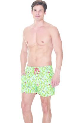 Dagi Erkek Şort Yeşil E0617Y0010