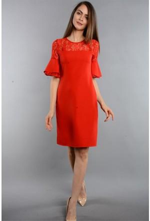 Espenica Dantel Detaylı Kol Fırfırlı Kısa Elbise Mezuniyet Balo Nikah Düğün Nişan Nikah Gece Elbise 3609