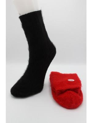 Igloo Cozy Termal Şardonlu 2'li Kadın Uyku Çorabı