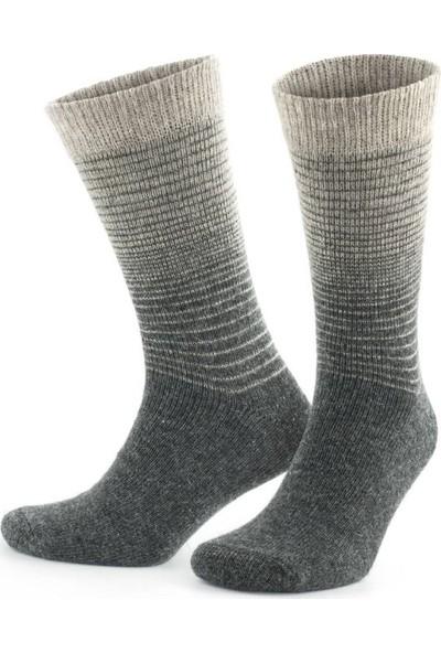 On My Way Doğal Alpaka Yünü Mix Soft Yün Kışlık Çorap 6 Çift 3098