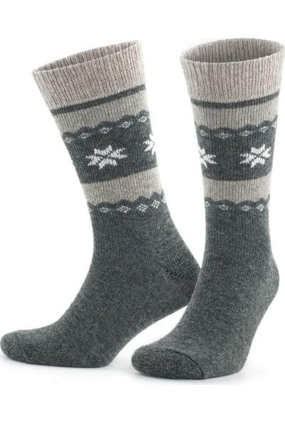 On My Way Doğal Alpaka Yünü Gri Antrasit Soft Yün Kışlık Çorap 4 Çift 3097