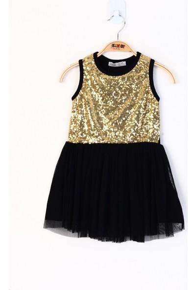 Toontoy Kız Çocuk Pullu Eteği Tüllü Elbise