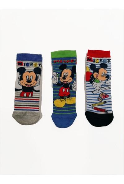 Çimpa Mıckey Mouse Mc 2480 3'lü Soket Çorap