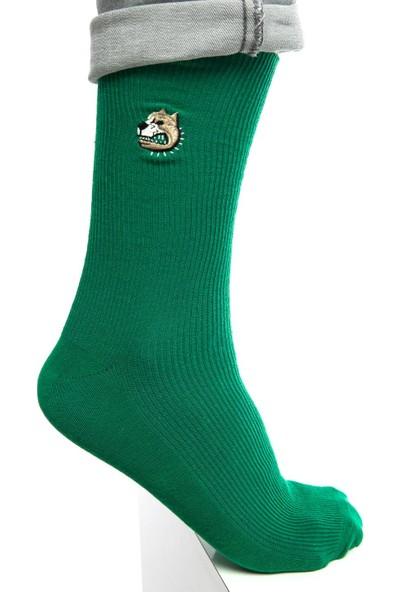 Socks Concept Pitbull Nakışlı Yeşil Renk Erkek Soket Çorap