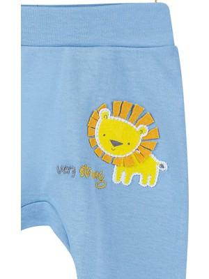 Bibaby Baby Lion Desenli Erkek Bebek Pamuk Pantolon