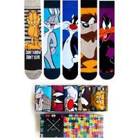 Socks Stations 5'li Çizgi Film Karekterleri Çorap Kutusu