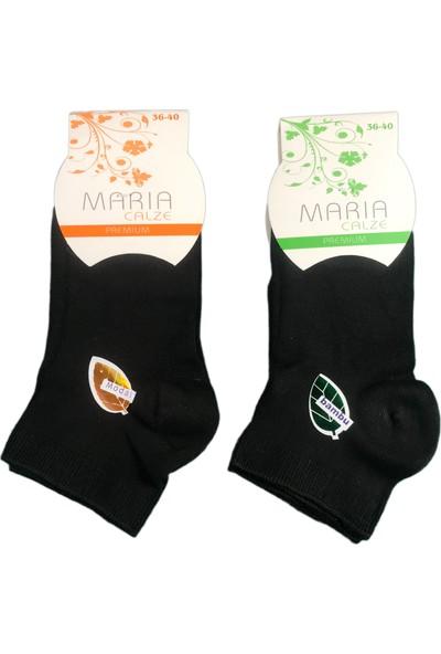 Maria 6'lı Maria Kadın Dikişsiz Bambu Patik Çorap