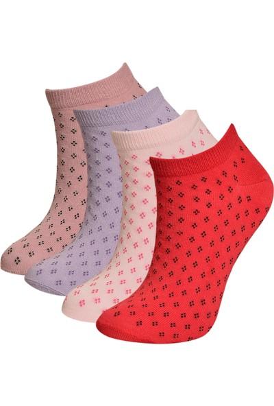 Brave Socks Çok Renkli 4'lü Paket Kadın Soket Patik Çorap ve Kadın 1 Çift Termal Çorap