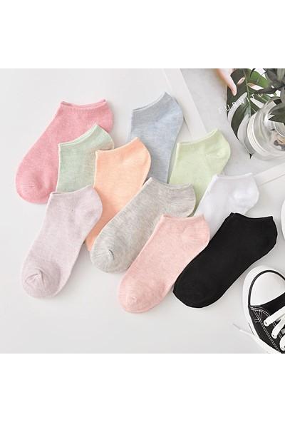 Fuba 10 Çift Koton Karışık Renk Kadın Patik Çorap Seti