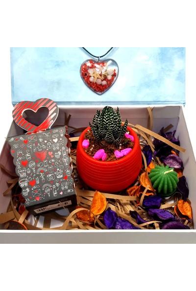 PR Sukulent Çiçek Yaşayan Kolye Kalpli Mumluk Hediye Kutusu
